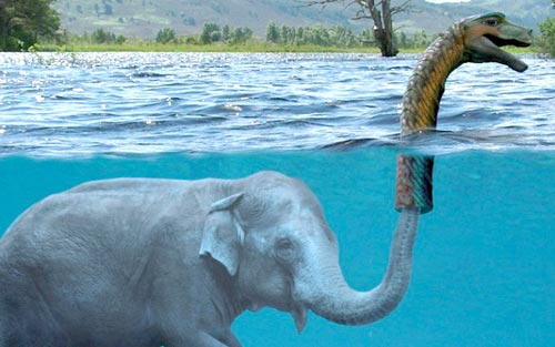 An elephant crouches under the water, whose trunk pops out appearing to make a Loch Ness monster sighting.