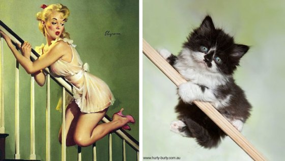 pin up girl and cat doing same pose on staircase