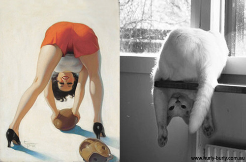 pin up girl and cat upside down with ball