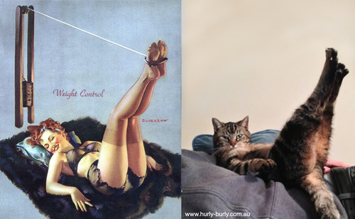 pin up girl and cat with legs in the air