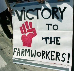 Victory to the Farmworkers sign