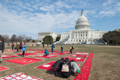 Force quilts on US capitol lawn
